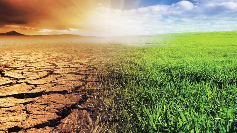 climate smart agriculture-meteorological application